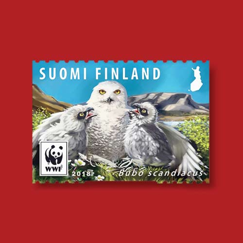 Snowy-Owl-on-Postage-Stamps
