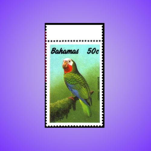 Bahamas-Amazon-Parrot
