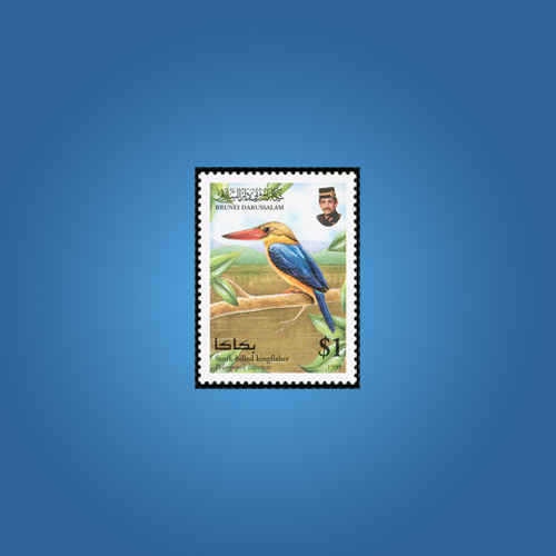 Brightly-Coloured-Bird,-Kingfisher-Stamp