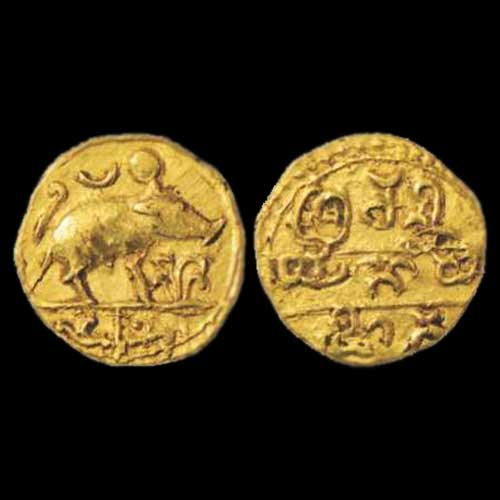 Image result for varaha coin
