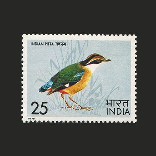 Feathers-and-Flight-on-stamps!