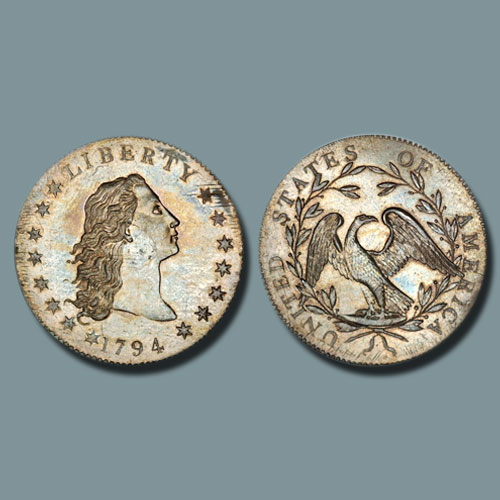 Flowing-Hair-Numismatic-Beauty