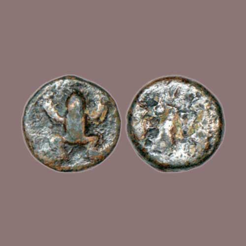Frog-on-Ancient-Indian-Coin