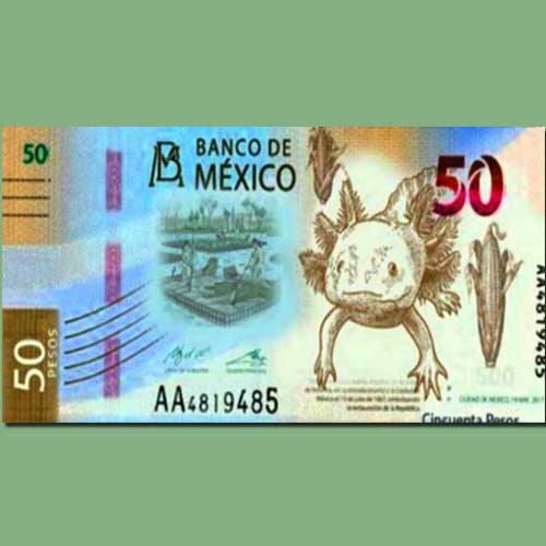 Mexico-to-release-50-peso-banknote