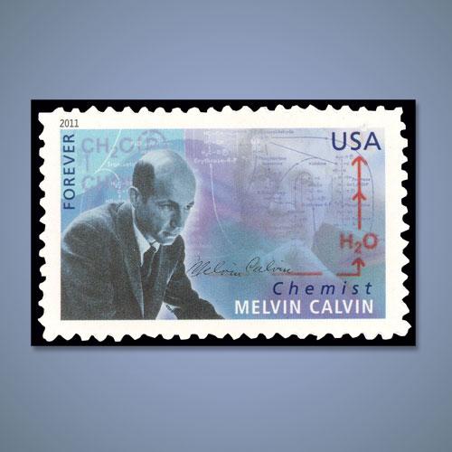 Nobel-Laureate-Melvin-Calvin-