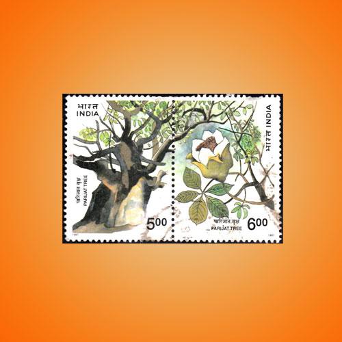 Parijat-–-The-Divine-Tree