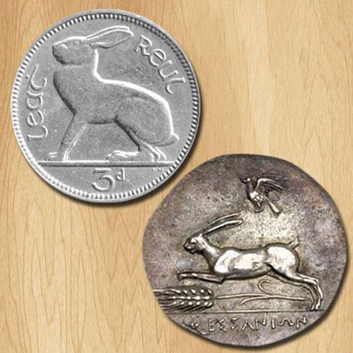 Rabbit-on-Coins!