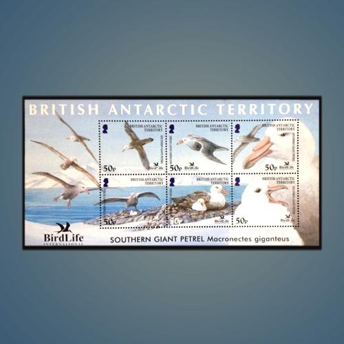 Stamp-of-Birdlife-at-British-Antarctic-Territory