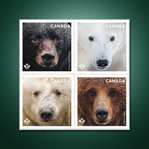 Wild-teddy-on-stamp