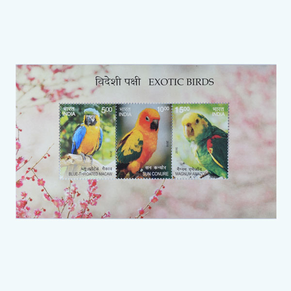 Exotic Birds Miniature Sheet Stamp