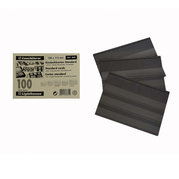 Lighthouse Standard Cards PVC- 3 Clear Strips with Cover Sheet- 100 per pack