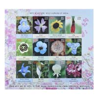 Wild Flowers Of India Miniature Sheet - 2013