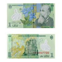 Romanian Currency Note 1 leu