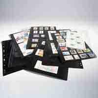 Lighthouse Plastic Pockets VARIO - 8 way division - Black film