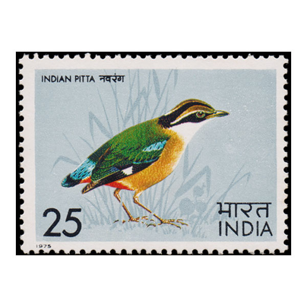 Indian Pitta Stamp