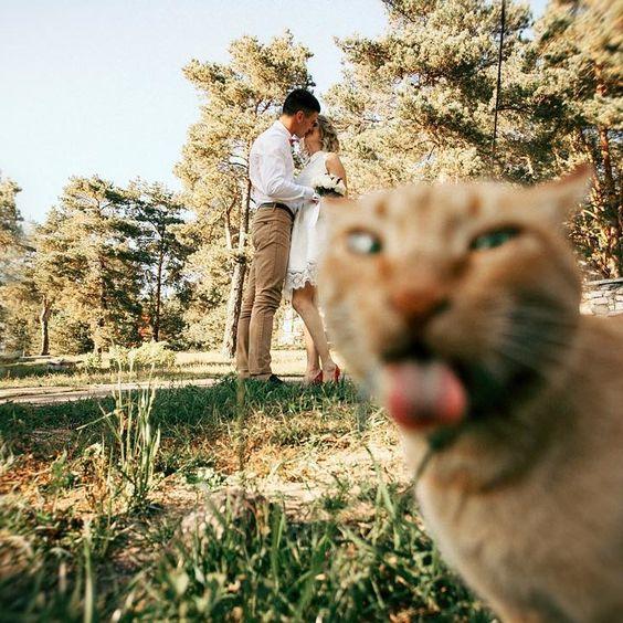 5 Quirkiest Engagement Photo Shoots