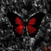 gothic_butterfly