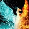 pheonix_rising