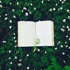 bookwarmth