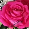 rosalinda22