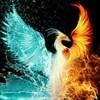 _the_ice_phoenix_