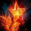 lilyfiremaster53
