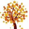 autumn_soul
