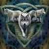 wolfhawk19