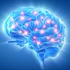neurotransmitter