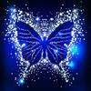 the_sparkle_soul