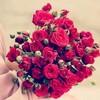 adorable_iqraaa