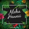 aloha17