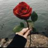 suu_writes