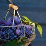 plums-fruit-fruit-basket-blue-169579