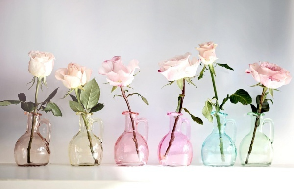 roses_flowers_jars_colorful_number_62235_2048x1319