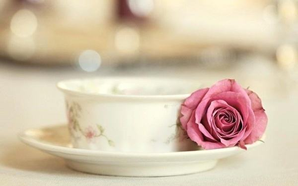 tea-cup-plate-rose-pink-vintage-wallpaper-by