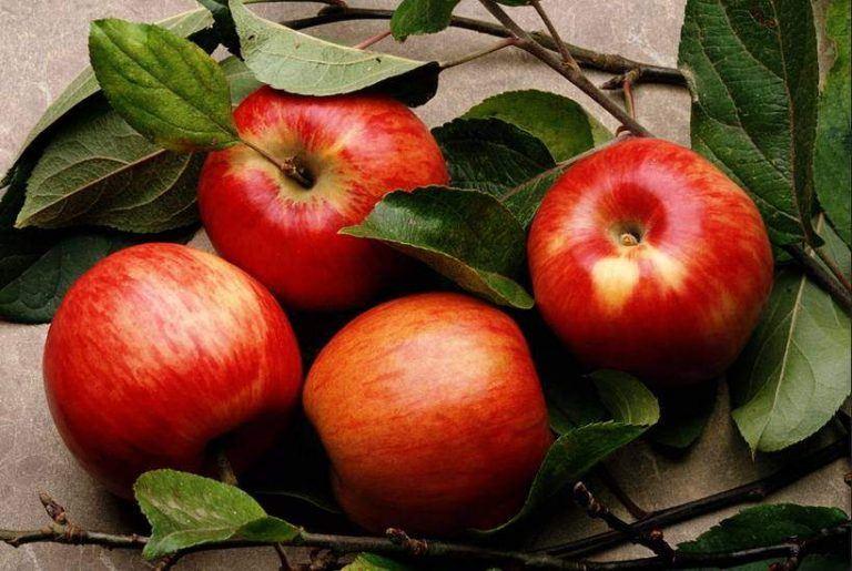 Bí kíp làm đẹp da đơn giản mà hiệu quả chỉ với một trái táo