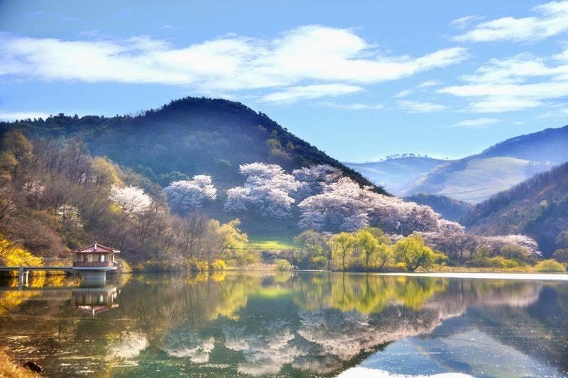 Hàn Quốc miễn visa từ tháng 2/2018, cùng xách balo lên đi thôi!