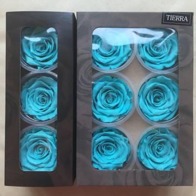 💓新顏色。女生的最愛之一💞  Lady J想跟你們說一個祕密 就是。。。我最喜歡的顏色 。。。其實是Tiffany Blue!  本店現已購入Amorosa Tiffany Blue系列玫瑰 更有Tiffany Blue Diamond Rose喔!😍😍 喜愛這種顏色的朋友現在有福囉!👍🏻👍🏻😁😁  各位客戶如欲訂製花禮,歡迎inbox我們🌹❤️  💝 https://www.facebook.com/LadyJFloral/ 💝  🍀🍀本店的所有花材全部採用日本多個知名品牌,花藝設計商品高質量保證,不用澆水或陽光照射,可保存約2至3年🍀🍀