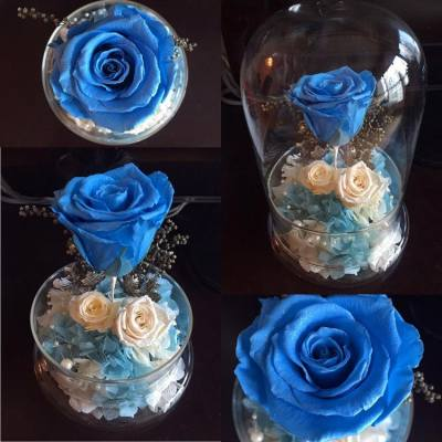 🌹✨Sparkling Rose Dome Series✨🌹   💙🎄Glittering Blue Topaz Rose with small glittering pearl white rose and baby bridal white rose; height of glass dome is 20 centimeters🎄💙   🌸Facebook page: https://www.facebook.com/LadyJFloral/ 🌸  ____________________________ 💟 Please like and share if you love it 💟 🌹 Custom-made orders are welcome 😄 📧 For orders or more information, please FB inbox us or email to ladyj.floral@gmail.com  #preservedflower #preservedflowers #roses #rose #blue #topaz #pearl #white #bridal #flowers #flower #silver #Christmas #LadyJFloral #Florever #Japan #Primavera #聖誕節 #禮物 #保鮮花 #永生花 #不凋花 #gifts #decorations #ornaments #floral #designs #擺設 #玫瑰 #玫瑰花