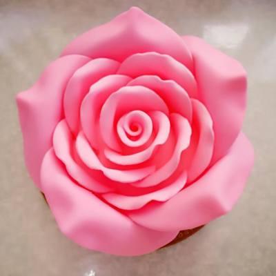 🌹Pink Rose Cake🌹 #情人節 #甜到漏