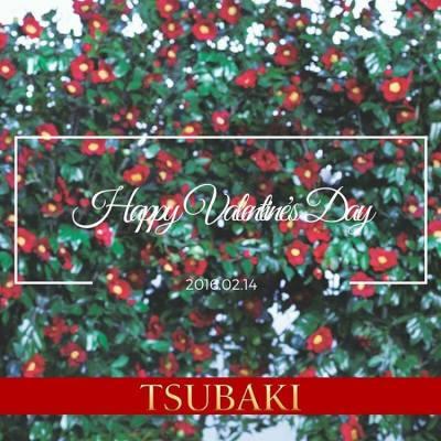 tsubakihkTSUBAKI 希望大家除咗過窩心情人節之外,喺往後嘅日子都依然自信動人:) 記住一把柔順有光澤的秀髮都會為您加唔少分架~~ Happy Valentine's Day! #tsubaki #tsubakihk #tsubakihongkong #valentines #beauty #confidence