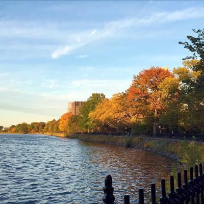 #autumn in #newyork
