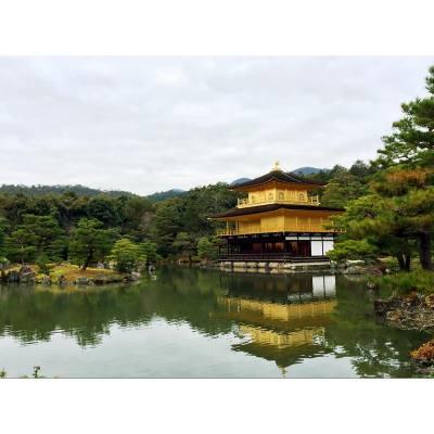 #京都 #金閣寺