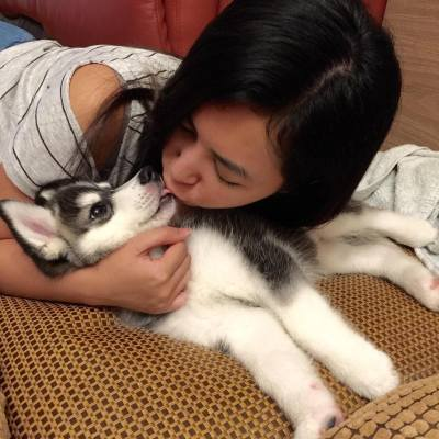 雖然你成日都咬手手🙈🙈🙈 但一鍚鍚就冧晒😍😍😍~ ❤️❤️❤️  #dog #puppy #husky #petstagram #tagsforlove #lovepet #instalove #doggie #dogs #huskypet #babydog  #doogielove #ilovemydog #dogoftheday #photooftheday #photoofthedog #picoftheday #cute #cutepuppy #cutedog #cola #hkig #hkiger #lovepet #petlover #doglover #huskylover #Cola #hkpet #Staice #Staiceliu
