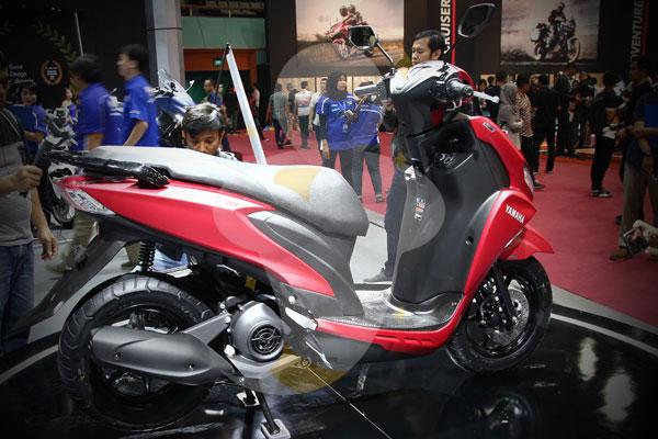 Bodi Yamaha Freego
