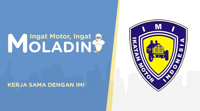 moladin IMI