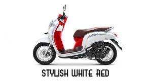 Honda Scoopy Stylish