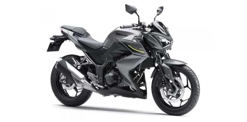 Motor 250cc Terbaik Kawasaki Z 250
