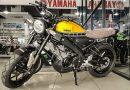 Yamaha XSR155 60th Anniversary Edition, Lebih Klasik dan Mahal!